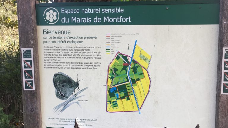 Marais de monfort en Isère