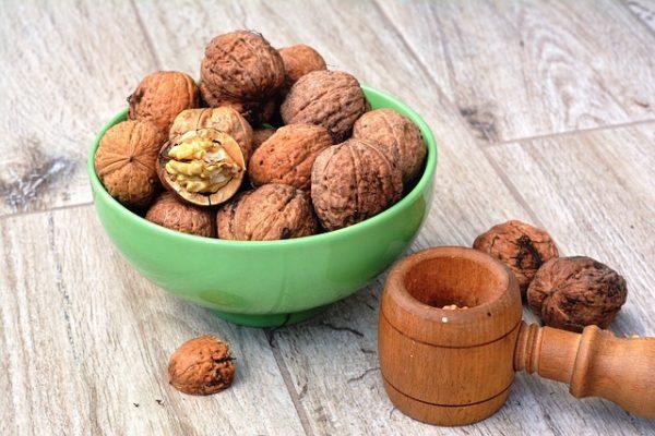 Quels sont les bienfaits de noix de Grenoble?