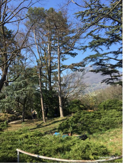 Paysage jardin des Dauphins
