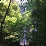 Cascade Pisserotte: le spectacle grandiose de la chute d'eau